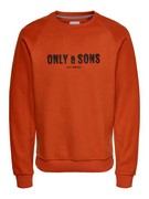 onsMspencer reg raglan crewneck sweat